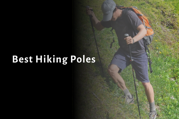 6 Best Hiking Poles 2021 Reviews, Comparisons and Buying Guides