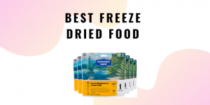 Best Freeze Dried Food